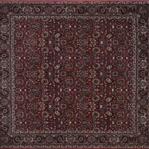 "Bijar square 8' 2"" by 8' 4"" rug with floral pattern from Persia-Iran"